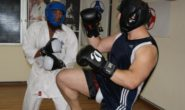 Effectiveness of TMA, Wushu and Karate in MMA